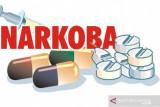 BNNK OKU Timur  bentuk remaja anti narkoba