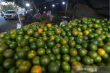 Penjualan Jeruk di Masa Pandemi di Palu