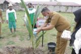 Wakil Bupati Pringsewu resmikan kebun SMPN 5 Pringsewu