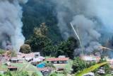 MPR minta TNI dan Polri tumpas pemasok senjata kelompok bersenjata di Papua