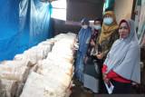 Tim Pengabdian Masyarakat Universitas Andalas dampingi Kelompok Limau Manis Sejahtera tingkatkan produksi jamur tiram