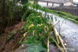 Hujan deras picu bencana  longsor dan banjir di Kabupaten Sukabumi