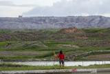 Warga melihat lokasi tanah terangkat di kolam mina padi milik warga akibat pergerakan tanah di Desa Sawang, Kabupaten Tapin, Kalimantan Selatan,  Kamis (16/9/2021). Pergerakan tanah tersebut mengakibatkan tanah terangkat di lahan fungsional pertanian milik warga, berdasarkan data Dinas Pertanian Tapin dampak dari pergerakan tanah sudah merusak 18 hektar sawah, kolam mina padi tujuh hektar, Jaringan Irigasi Tingkat Usaha Tani (JITUT) 200 meter dan Jalan Usahan Tani (JUT) 100 meter hingga saat ini penyebab pergerakan tanah tersebut belum diketahui. Foto Antaranews Kalsel/Bayu Pratama S.