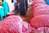 Belasan ton bawang merah ke Papua menumpuk di Pulau Semau