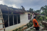 Angin kencang landa Bukittinggi tumbangkan pohon tua, satu rumah nyaris hancur ditimpanya