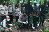 Kapolda Sulut lepasliarkan anak Burung Maleo di TN Bogani Nani Wartabone Bolmong