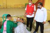 Wakil Bupati Pringsewu tinjau pelaksanaan donor darah di Balai Pekon Pagelaran