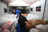 7.767 bansos didistribusikan ke warga terdampak COVID-19 di Kota Surabaya