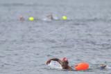 Peserta memacu kecepatan saat mengikuti kejuaraan renang perairan terbuka Oceanman Bali 2021 di kawasan Sanur, Denpasar, Bali, Sabtu (18/9/2021). Oceanman Bali 2021 merupakan salah satu bagian dari seri dunia Oceanman yang pertama kali diselenggarakan di Indonesia dan diikuti 161 orang peserta dengan mempertandingkan empat kategori yaitu OceanKids dengan jarak 1 km, Sprint dengan jarak 2 km, Half Oceanmen dengan jarak 5 km serta Oceanman dengan jarak 10 km. ANTARA FOTO/Fikri Yusuf/nym.