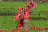 Penari beraksi di Sawah Banjar di Licin, Banyuwangi, Jawa Timur, Senin (20/9/2021).Wisata persawahan tersebut diharapkan dapat menarik wisatawan baik lokal ataupun mancanegara untuk mengenal lebih dekat mengenai pertanian khususnya tanaman padi.Antara Jatim/Budi Candra Setya/zk