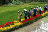 Bupati Banyuwangi Ipuk Fiestiandani Azwar Anas (kiri) melihat sawah pada Festival Padi di Licin, Banyuwangi, Jawa Timur, Senin (20/9/2021). Pada Festival padi itu mempertujukan tradisi agraris warga Banyuwangi mulai dari penanaman secara tradisional hingga moderen. Antara Jatim/Budi Candra Setya/zk