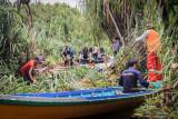 Tim gabungan bersihkan jalur patroli Karhutla di  Sungai Sebangau