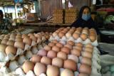 Harga telur dan ayam ras di pasar tradisional Makassar bergerak naik