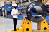 Presiden Jokowi harap pabrik baja lembaran panas akan hemat devisa Rp29 triliun