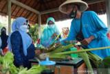 Pemkot Tanjungpinang siapkan bantuan alat penunjang pertanian