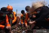 DMC dan Tabur BankSa peringati World Cleanup Daya 2021 di kawasan Sungai Cisadane