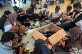 BNPB ajak warga Papua untuk pakai masker sukseskan PON XX