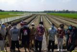 Alumni Polbangtan YoMa atasi masalah kekurangan air di Boyolali