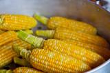 Cara penyajian jagung pengaruhi manfaatnya bagi kesehatan