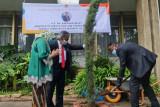 Menteri Inovasi dan Teknologi Ethiopia tanam pohon di KBRI Addis Ababa