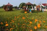 Pengunjung menikmati suasana objek wisata Lapak Bumi Semendung di Kelurahan Klegen, Kota Madiun, Jawa Timur, Minggu (26/9/2021). Pemkot Madiun membangun objek wisata dan lapak Usaha Mikro Kecil Menengah (UMKM) di areal persawahan tersebut dimaksudkan untuk memberikan daya tarik wisatawan serta menumbuhkan perekonomian bagi warga setempat. Antara Jaim/Siswowidodo/zk