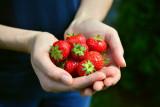 Tingkatkan kebahagiaan dengan makan sayur, buah dan olahraga