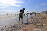 Sejumlah warga membersihkan sampah di pantai Dadap, Juntinyuat, Indramayu, Jawa Barat, Minggu (26/9/2021). Kegiatan yang diikuti berbagai kalangan masyarakat tersebut dalam rangka memperingati World Cleanup Day 2021. ANTARA FOTO/Dedhez Anggara/agr