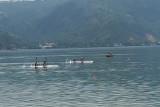 PON Papua-Cabor dayung PON XX diikuti 22 provinsi, rebutkan 40 medali