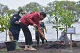 Presiden Jokowi tanpa alas kaki telusuri Pantai Raja Kecik