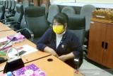 Legislator Seruyan soroti harga karet yang kerap tidak stabil
