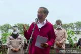 Presiden: Pemerintah akan rehabilitasi mangrove di Indonesia