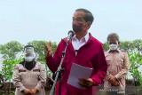 Jokowi wajibkan pelayanan publik rahasiakan NIK dan NPWP
