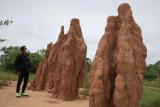 Kapsul waktu hingga rumah semut raksasa ada di Kabupaten Merauke