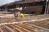 Petani garam di Kab. Grobogan nikmati harga jual tinggi