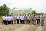Katingan pusatkan Panen Jagung Nusantara di wilayah Hampangen