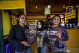 Pengunjung memperlihatkan jenis-jenis kopi saat launching Kopi Meratus di obyek wisata Pagat, Barabai, Kabupaten Hulu Sungai Tengah, Kalimantan Selatan, Jumat (1/10/2021). Dalam mewujudkan pertumbuhan dan pengembangan ekonomi yang ramah lingkungan berbasis kerakyatan, Serikat Petani Indonesia (SPI) Kalimantan Selatan bersama Pemerintah Daerah Hulu Sungai Tengah meluncurkan Kopi Meratus dengan tiga jenis kopi yaitu kopi Robusta, Liberika dan Ekselsa yang tumbuh di Pegunungan Meratus sekaligus dalam rangka memperingati Hari Kopi Dunia 2021 (International Coffee Day). Foto Antaranews Kalsel/Bayu Pratama S.