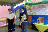 PLN NTT gelar Ekspedisi Mutiara Hijau dukung pengembangan kelor