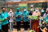 Jumat berkah, Ketua TP PKK Barito Utara bagikan bingkisan sayur