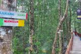 Serba-serbi - Dilarang bawa mantan di ekowisata mangrove Pomako Mimika