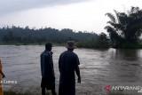 Warga Banggai hilang diterjang banjir saat menyeberang Sungai Sinorang