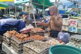 Distan Mataram setop mendatangkan telur ayam dari luar daerah