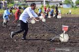 Jokowi berharap Sorong jadi daerah produsen utama pertanian