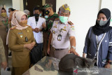 Balai Karantina Kendari gelar vaksinasi rabies gratis