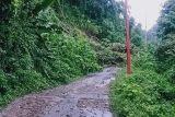 Jalan menuju Desa Kabiraan Majene tertutup tanah longsor