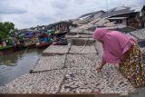 Harga Ikan Asin Naik