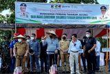 Pemprov Sulteng  dukung Koperasi RMP berdayakan warga tanam jagung