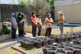 LP2M Unsri dukung dosen kembangkan  pertanian urban