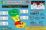 Tinggal 87 pasien COVID-19 di Palangka Raya jalani perawatan