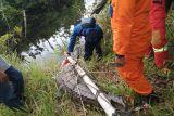 Buaya muara tiga meter dilepas liar di Sungai Penarik Natuna