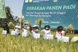 Bupati Mamuju dorong petani manfaatkan teknologi pertanian dengan pendampingan BPTP